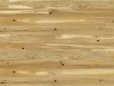 Dřevěná podlaha Barlinek Pure DUB CONCHI PICCOLO