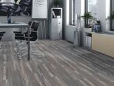 Laminátová plovoucí podlaha Haro Tritty 250 Pine Pacifiko
